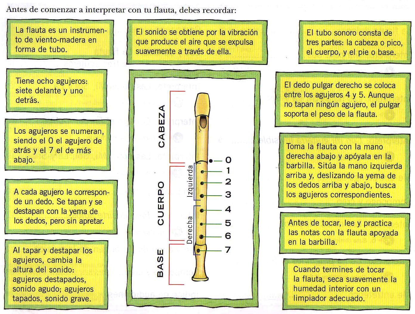 Partes de la flauta mcarmenfer 39 s blog for Agujeros en el cuerpo